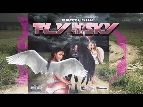 Pritti Shu -  Fly In the Sky Official Audio