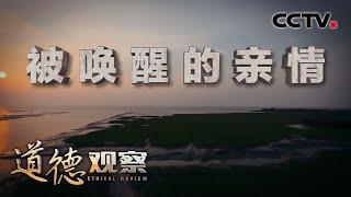 《道德观察(日播版)》 20200606 被唤醒的亲情| CCTV社会与法