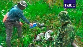 Обнародовано видео экспедиции на перевал Дятлова, где были выдвинуты новые версии трагедии