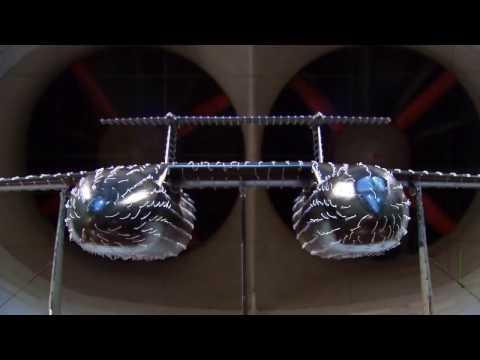 Уникальный двухфюзеляжный самолёт для военных целей разработали в России