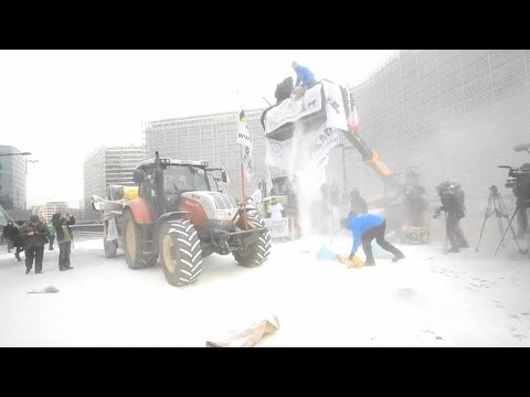 Angry dairy farmers spray EU headquarters with milk powder