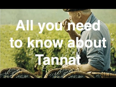 wine article All You Need To Know About Tannat