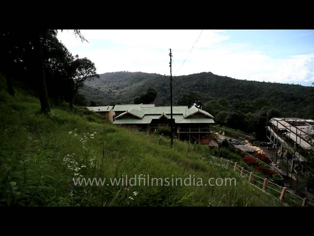 View of Lohaghat from Mayavati Ashram, Champawat Travel Video