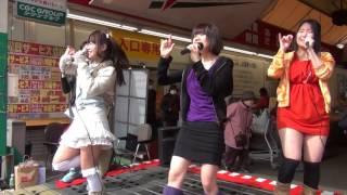 2014年2月16日(日) 11:01-11:31 ダイキョーバリュー弥永店 Hips Ships.