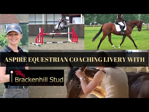 NEW PROJECT REVEAL! Aspire Equestrian Coaching Livery with Brackenhill Stud