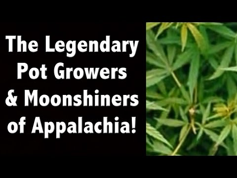 The Legendary Pot Growers and Moonshiners of Appalachia.