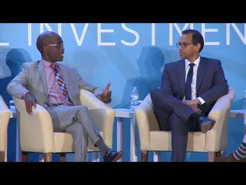 AHIF Conference 2017 Demystifying the development finance institutions