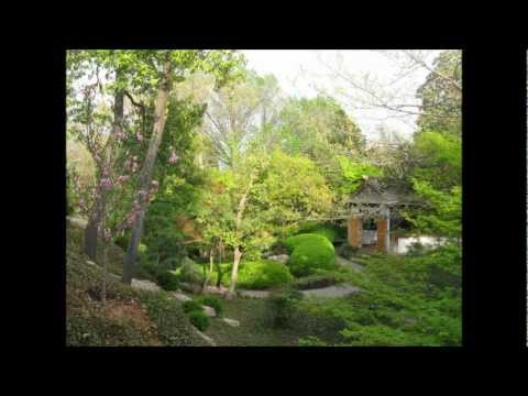 SPRING IN FORT WORTH JAPANESE GARDEN フォートワース日本庭園春の季節