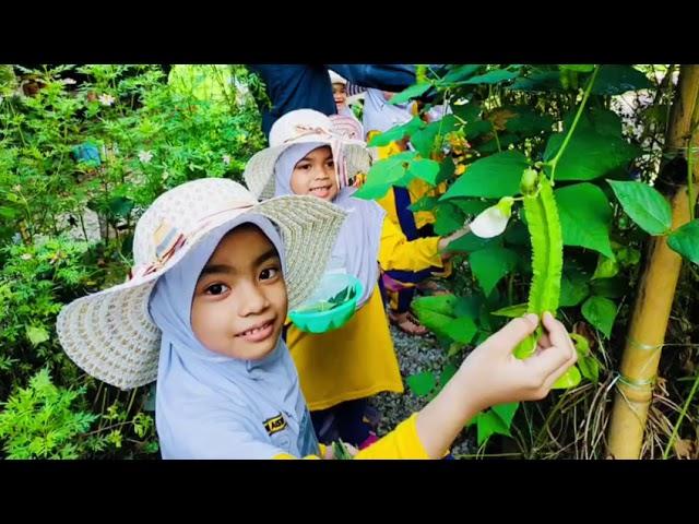MIN House Camp Agro Farm , Kelantan