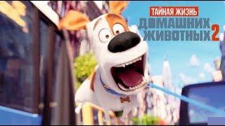 Тайная жизнь домашних животных 2 (самое интересное) все ролики