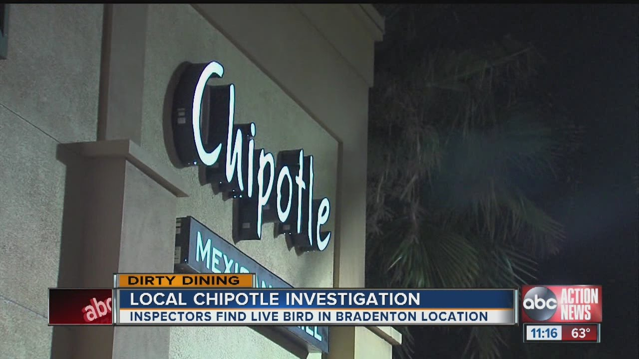 Dirty Dining Chipotle Mexican Grill Youtube