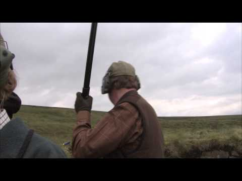 Grouse shooting final