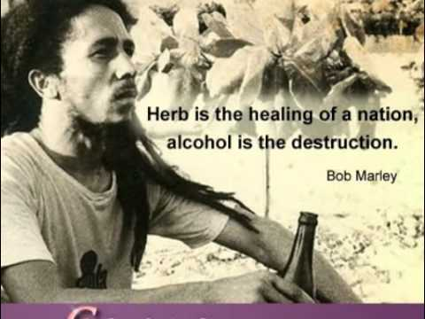 Bob Marley Quotes About Weed Weed Quotes And Sayings Youtube