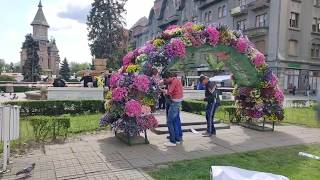 Timfloralis Timisoara Festivalul Florilor 2019