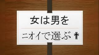 http://plaza.rakuten.co.jp/daimyouou/diary/201807120000 ぼくたちの...