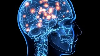 Top 10 Unsolved Mysteries Of The Human Brain
