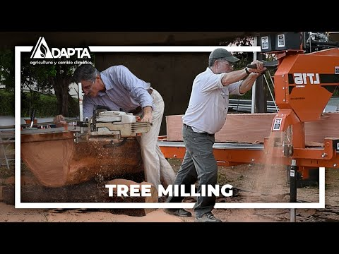 Milling Techniques For Rescued Logs | ADAPTA Series