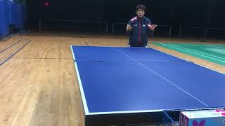 Butterfly Training Tips: Table Tennis Exercises At Home With Huijing Wang