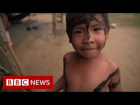 Amazon rainforest indigenous people in fight for survival- B