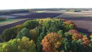 DJI Phantom 3 professional drone with 4K resolution (The Netherlands)