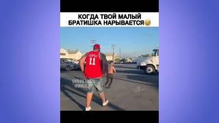 СМЕШНЫЕ ЖИВОТНЫЕ Часть 88 смешное видео юмор приколы тик ток