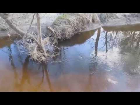 Стоянки щуки на малой реке(микро-речке)