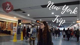 НЬЮ-ЙОРК / ВЛОГ / LISASHLAND