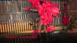 PARADISDEA Legall & Friends 2014 Carnival Presentation