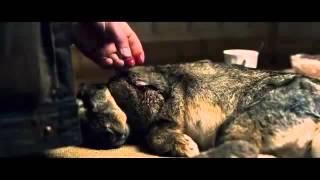Delivery Man 2013] Official trailer Preview,  Vince Vaughn, Chris Pratt, Cobie Smulders