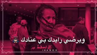سهر القوافي عمر محي الدين / في عنادك زايدة حبة
