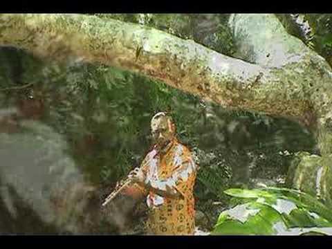 E David Crawford - Caribbean Nights Video