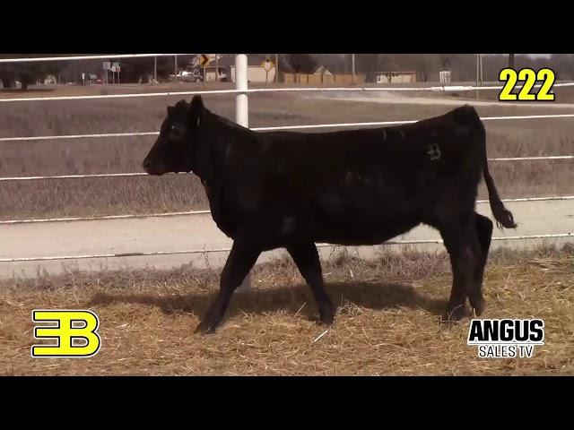 Benoit Angus Lots 221 - 223