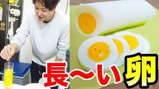 本当?嘘?卵料理の裏技5個やってみた!!
