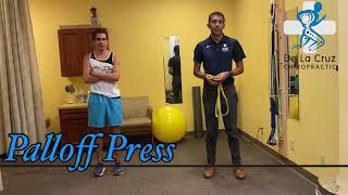 Palloff Press - De La Cruz Chiropractic