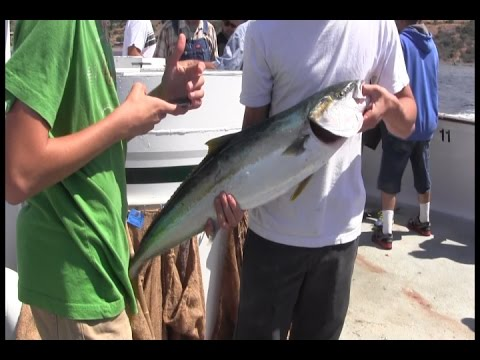 Silver Star fishing 2015