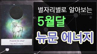 [별자리운세] 5월달 별자리별로 알아보는 뉴문 에너지 …