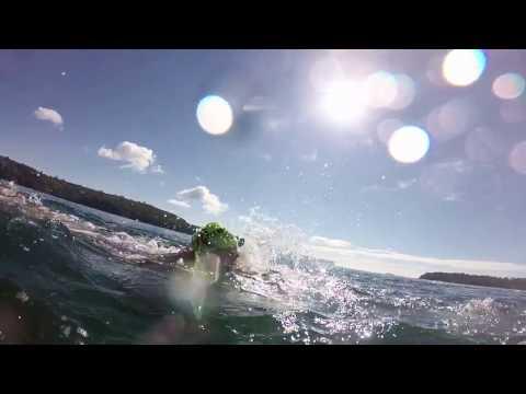 Sydney Harbour swimming