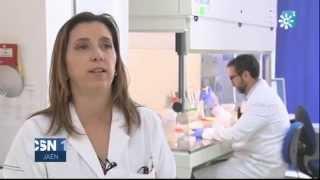 Análisis de detección en Jaén de Xylella, la bacteria que en Italia ha secado miles de olivos