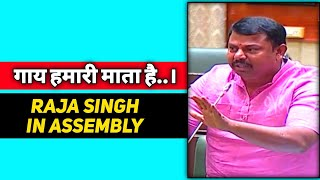 Raja Singh BJP MLA Raising Cow Slaughter Issue In Telangana Assembly