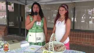 Penn Street Market,  Experience! OnSite Meet Rachel Earhart