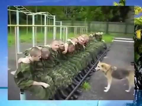 Духов дрочат в армии, приколы с дедовщиной