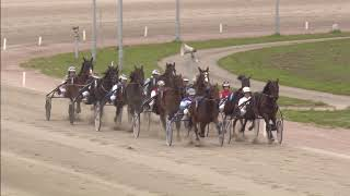Vidéo de la course PMU PRIX SANDRA BAKKER