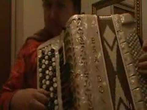 Traditional Swedish accordeon music