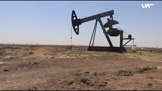 دخان حراقات النفط يسهم في تلوث البيئة في بلدة اليعربية بريف الحسكة