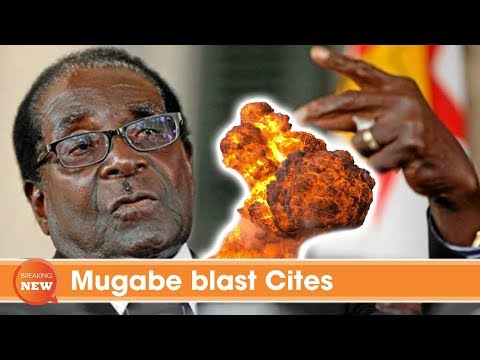 Mugabe blast Cites