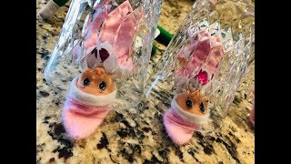 BABY ELF ON THE SHELF TRAPPED INSIDE A MAGIC GLASS