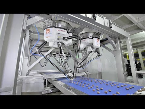 High Speed Vision Based Pick And Place - Cybernetik Automation