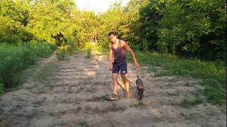 Кане-корсо дрессировка щенка в 4 месяца на природе