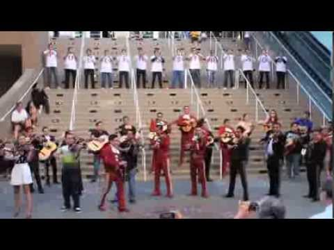Pulling Strings Mariachi Flashmob!