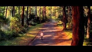 Tu Jahaan -Salaam Namaste [BluRay 1080p HD]